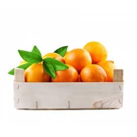 Naranja Mesa 15kg