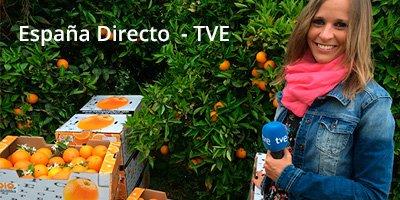 Naranjas Quique en España Directo