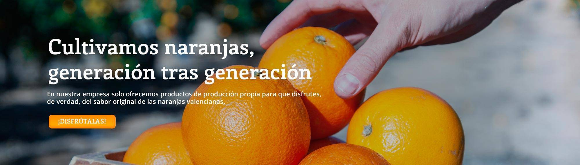 We cultivate oranges, generation after generation