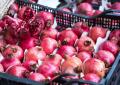 Granada, una fruta para mantenerse joven
