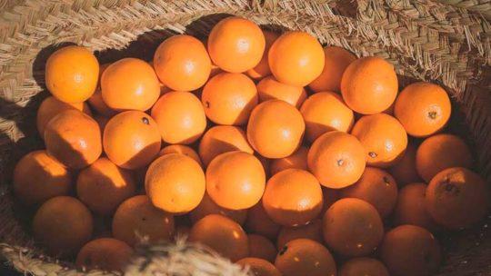 ¿Cuántos tipos de mandarinas existen?