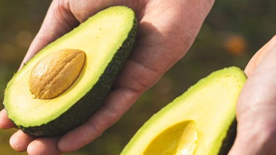 ¿Cómo conservar aguacate? Claves que te ayudarán a disfrutar al máximo de esta beneficiosa fruta