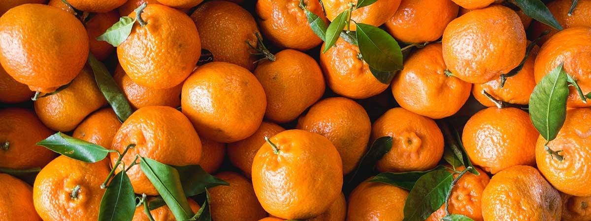 Comprar Mandarinas en Naranjas Quique